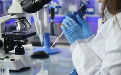 Top 5 applications of microbiology